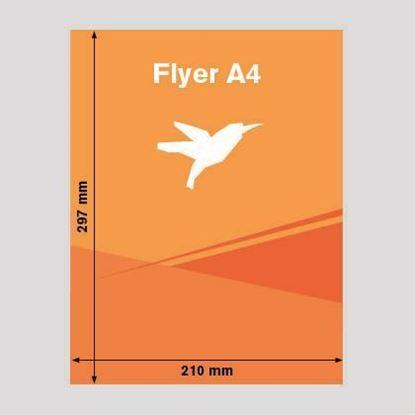 Bild von Flyer DIN-A4